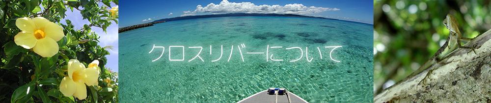 西表島 シュノーケル・カヤックツアー クロスリバーについて