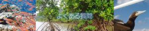 西表島 シュノーケル・カヤックツアー クロスリバーよくある質問