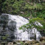 秘境!西表島「マヤグスクの滝」