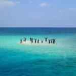 マングローブカヤック&バラス島シュノーケルでバラス島水没!?