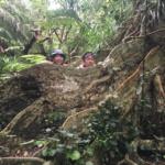 西表島を1日で満喫!!バラス島&ピナイサーラの滝!