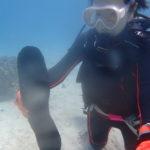 晴れました!バラス島体験ダイビング!
