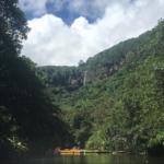 夏休み直前です西表島!ピナイサーラの滝&バラス島シュノーケル!