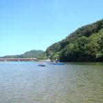 西表島魅惑のマングローブ