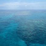海日和のGW!バラス島周辺シュノーケル