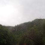 西表島カヌーツアー!雨上がりのピナイサーラ