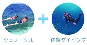 シュノーケル&体験ダイビング